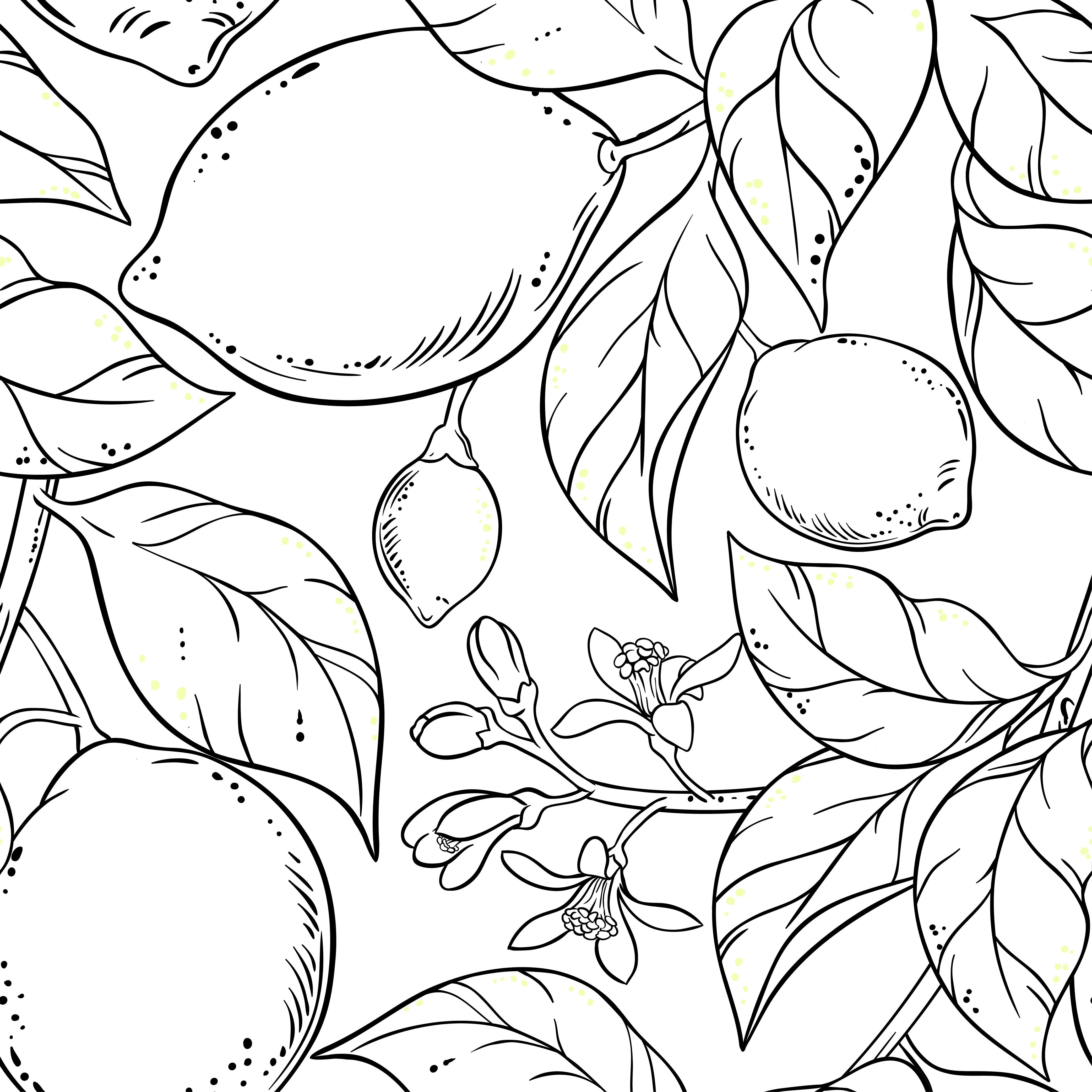Coloriage Citron La Petite Cueillette